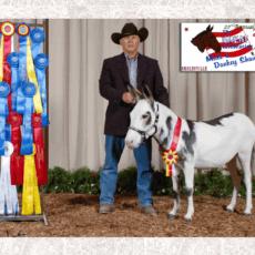 AssN9 Ranch 1