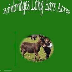 Bainbridge's-Long-Ears-Acres-1.png