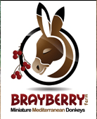 Brayberry-farm-logo-1.png