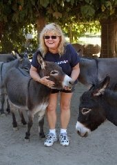 Gail and her donkeys