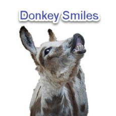 Donkeys Smiles1