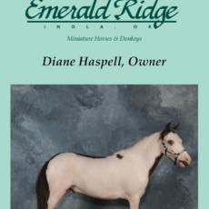 Emerald Ridge Miniatures1