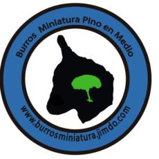 Granja Pinoenmedio logo