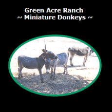 Green Acre Ranch 1