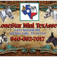 LongStar Mini TexAsses logo