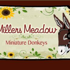 Millers Meadow logo