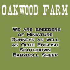 Oakwood Farm 1
