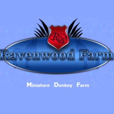 Ravenwood Farm and Harness logo
