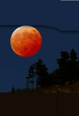Red Moon Acres logo