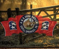 AB-Mini-Ranch-Logo.png