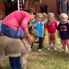 Wisteria's Jackpot visiting a preschool