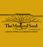 Mustard Seed 1
