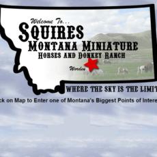 Squires Montana logo