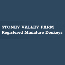 Stoney-Valley-Farm-1.png