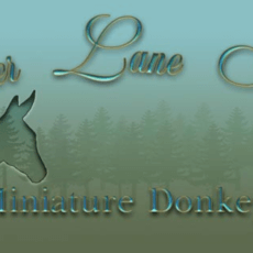 Timber Lane Acres logo