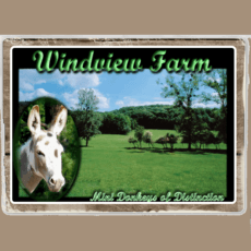 Windview Farms Logo
