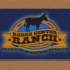 Rodeo Center Ranch logo